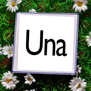 UNBESTIMMTER A